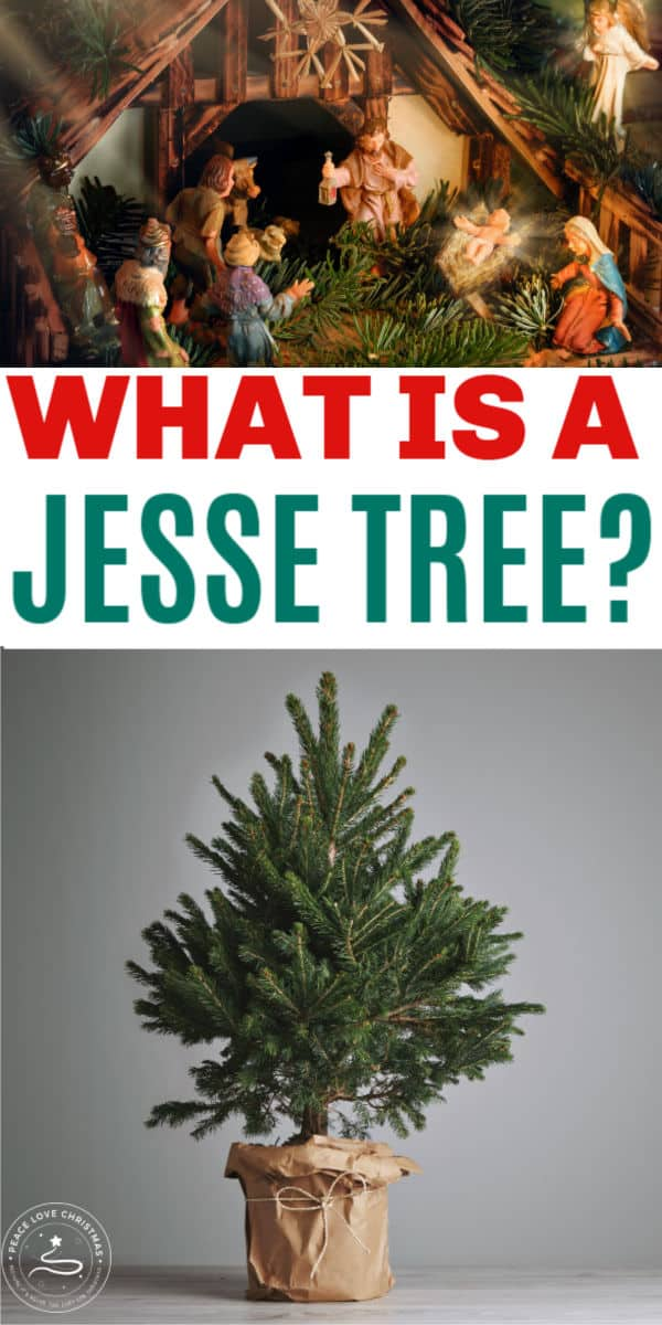 What is a Jesse Tree