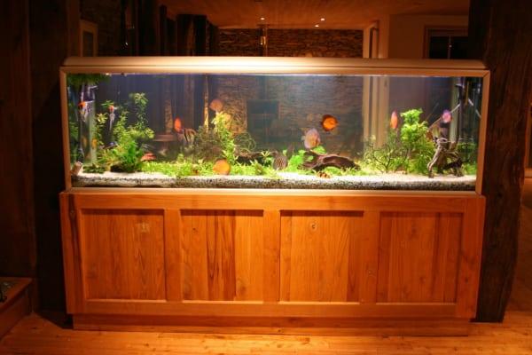 gift ideas for people who love aquariums