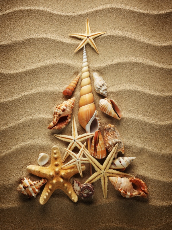 christmas tree made out of shells in the sand